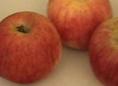 produits_fruits_pomme_belledesalin1 dans Recettes